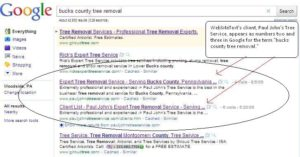 tree removal get ranked in google